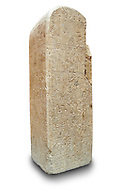 Picture & image of a Hittite Monument with Heiroglyphics  from Sultanhani near Kayseri, Turkey. Ereceted by the town ruler Wassume to the God Tarhui to ask for a good harvest from the vineyards & Orchards. At the end is a warning of damnation for anyone who damages the monument. Ancora Archaeological Museum. 6