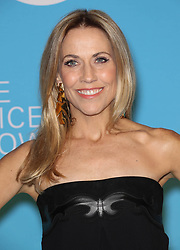 Sheryl Crow at the UNICEF USA's 14th Annual Snowflake Ball in New York City.