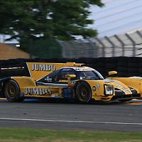 #29  Racing Team Nederland, Dallara P217-Gibson, LMP2, driven by: Frits Van Eerd, Giedo Van Der Garde, Jan Lammers, 24 Heures Du Mans  2018, , 16/06/2018,