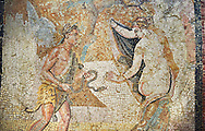 Picture of a Roman mosaics design depicting a Satyr persuing Bacchante, from the ancient Roman city of Thysdrus. End of 2nd century AD, House in Jiliani Guirat area. El Djem Archaeological Museum, El Djem, Tunisia. .<br /> <br /> If you prefer to buy from our ALAMY PHOTO LIBRARY Collection visit : https://www.alamy.com/portfolio/paul-williams-funkystock/roman-mosaic.html . Type - El Djem - into the LOWER SEARCH WITHIN GALLERY box. Refine search by adding background colour, place, museum etc<br /> <br /> Visit our ROMAN MOSAIC PHOTO COLLECTIONS for more photos to download as wall art prints https://funkystock.photoshelter.com/gallery-collection/Roman-Mosaics-Art-Pictures-Images/C0000LcfNel7FpLI