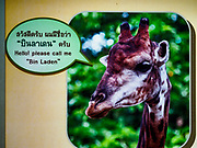 "17 AUGUST 2018 - BANGKOK, THAILAND:   A sign for ""Bin Laden"" the make giraffer in Dusit Zoo. Dusit Zoo, Bangkok's oldest public zoo, opened in 1938. The zoo grounds were originally the Dusit Royal Garden. The zoo is scheduled to close by the end of August 2018 because it is being relocated to Nakhon Pathom province, south of Bangkok.      PHOTO BY JACK KURTZ"