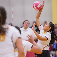 Rehoboth Lynx Mya Begay (9) spikes the ball to the Crownpoint Eagles Saturday at Rehoboth High School.