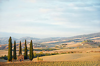 Photo of an old farm building surrounded by cypress trees and golden land in Val d'Orcia, Tuscany.