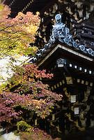 Automne à Manshu In Temple Kyoto 2015