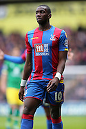 Yannick Bolasie of Crystal Palace looks on. Barclays Premier League match, Crystal Palace v Norwich city at Selhurst Park in London on Saturday 9th April 2016. pic by John Patrick Fletcher, Andrew Orchard sports photography.