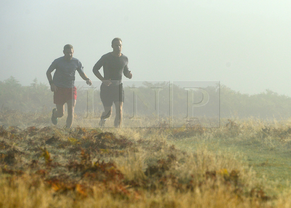 © Licensed to London News Pictures. 14/10/2012. Richmond, UK Two men jog in the morning sunshine. Early mooring mist and sunshine in Richmond Park, Surrey, today 14th October 2012. Photo credit : Stephen Simpson/LNP