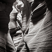 Secret Canyon- Page, AZ