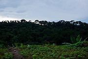 Jequeri_MG, Brasil...Rota Imperial. Na foto comunidade de Jequeri, Minas Gerais...The Royal-Imperial Route. In this photo the Jequeri community, Minas Gerais...Foto: BRUNO MAGALHAES / NITRO
