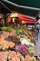 A flower shop brightens the narrow lanes that thread St-Germain-des-Pres.