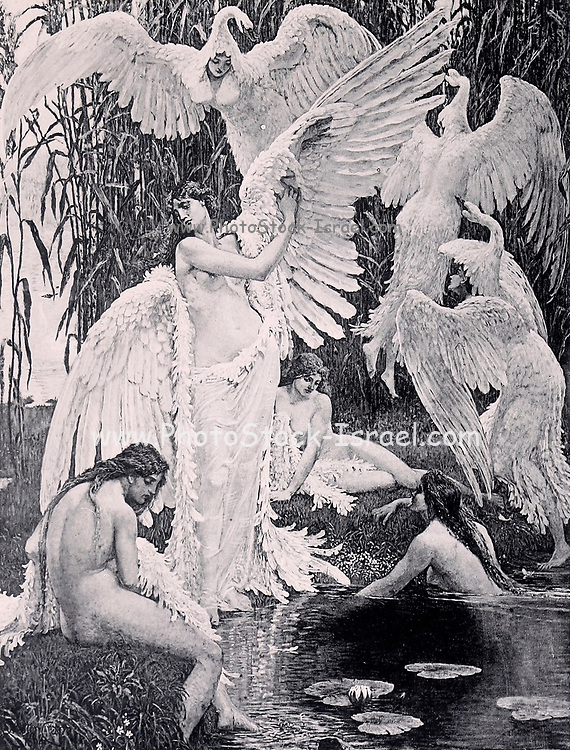 Women in a lake and swan feathers by Albert Marie Adolphe Dagnaux (10 July 1861, Paris - 22 November 1933, Mantes-la-Jolie) from Le Nu au Salon 1895 A collection of Nude photography published in Paris in 1908 by Societe nationale des beaux-arts (France). et Societe des artistes francais. Catalogues of nudes exhibited at the official Paris Salons. Risqué photography is material that is slightly indecent or liable to shock, especially as sexually suggestive.