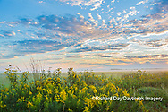 63893-03712 Sunrise and prairie Prairie Ridge State Natural Area Marion Co. IL