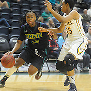 UNCW's Amber Reeves drives on Drexel's Carrie Alexander Sunday February 1, 2015 at Trask Coliseum on the campus of UNCW. (Jason A. Frizzelle)