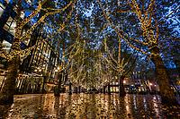 Occidental Avenue, Pioneer Square