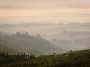A misty dawn over the Tuscan landscape, with the iconic silhouettes of the Cyprees Tree, at Montepulciano, Italy