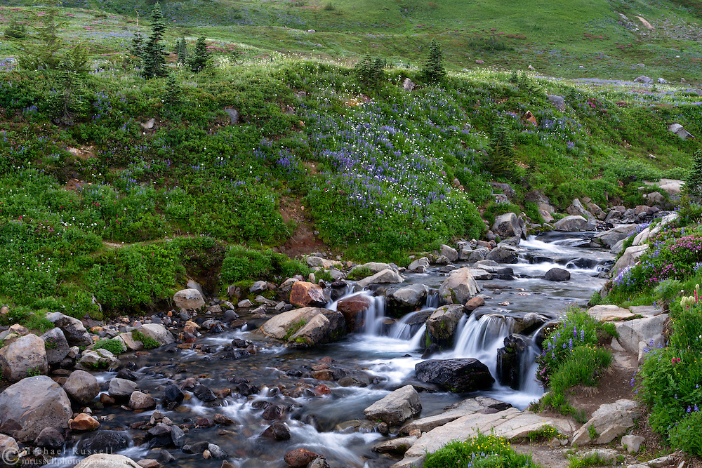 A small waterfall on Edith Creek at Paradise in Mount Rainier National Park, Washington State, USA