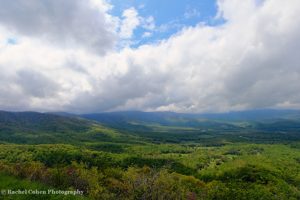 """""""The Spring of Life""""<br /> <br /> Welcoming in spring in the mountains of the Blue Ridge!!<br /> <br /> The Blue Ridge Mountains by Rachel Cohen"""
