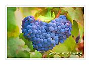 Cabernet grape heart WineArt card