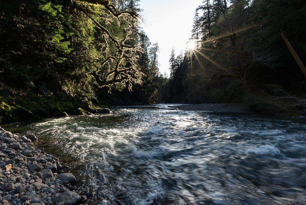 Middle Fork Santiam River, Oregon.