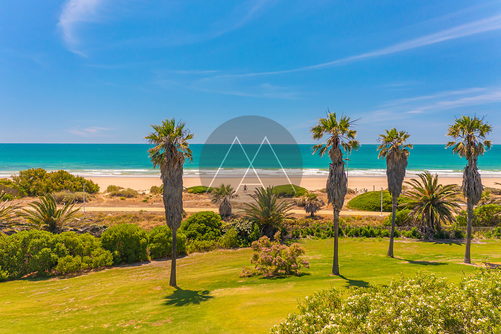 Aerial view of a person at the beach and the palm trees of Playa La Ballena in Cadiz, Andalusia, Spain.