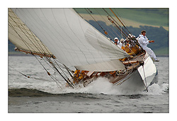 The Lady Anne, a 15 metre (95') Gaff Cutter built in 1912 here fully powered up on her way to Rothesay on the Clyde...This the largest gathering of classic yachts designed by William Fife returned to their birth place on the Clyde to participate in the 2nd Fife Regatta. 22 Yachts from around the world participated in the event which honoured the skills of Yacht Designer Wm Fife, and his yard in Fairlie, Scotland...FAO Picture Desk..Marc Turner / PFM Pictures