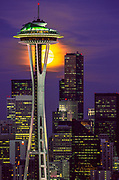 """The Space Needle is adorned with an """"Alien Species"""" to advertise the ongoing exhibit at the Science Fiction Museum at Pacific Center"""