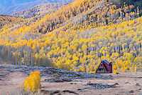 A lone cabin in Utah's Wasatch Mountains surrounded by bright yellow aspen trees.
