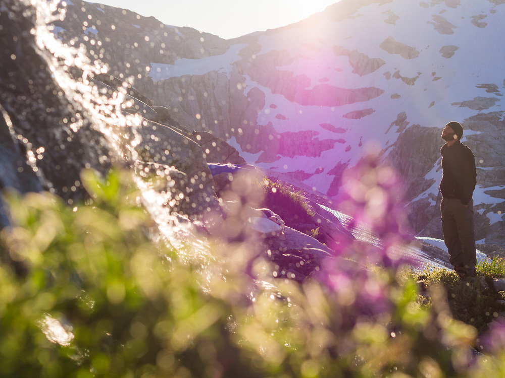 Nathan Rice wakes up to backlit waterfalls and lupin (Lupinus sp.) in Terror Basin, North Cascades National Park, Washington.