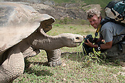 Galapagos Giant Tortoise (Geochelone nigra) and photographer Pete Oxford, Galapagos Islands, Ecuador