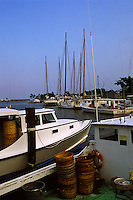 Tilghman Island, Maryland --Fishing boats take harbor at Dogwood Harbor, along the Chesapeake Bay. The Bay,the largest estuary in the United States was once known for its great seafood production. Though it still yields more fish and shellfish (about 45,000 short tons) than any other estuary in the United States, the body of water is less productive than it used to be. Runoff from urban areas and farms, overharvesting, and invasion of foreign species have had an impact on the bay's health.