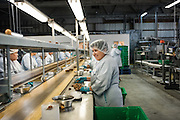 The packaging line at the Nutra Fig Factory