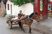 A happy smiling farmer drives his horse and cart near to Lugu Lake, Yunnan, China.