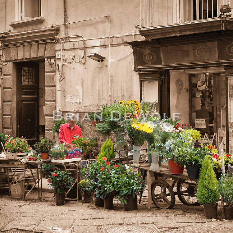 """This is an open edition print. Canvas prints have a 2 inch black border so it can be gallery wrapped. The print is made using pigmented inks on museum-grade canvas or watercolor paper. Each print also gets a light coating of lacquer protective spray. Each print is hand signed by Brian DeWolf.  Flower vendor in an alley of Naples, Italy. The area was quite busy with people walking in the streets and alley, but I simply waited to capture the seller by himself concentrating on his arrangements.<br /> Digital capture.  Aspect ratio is 1""""w x 1""""h."""