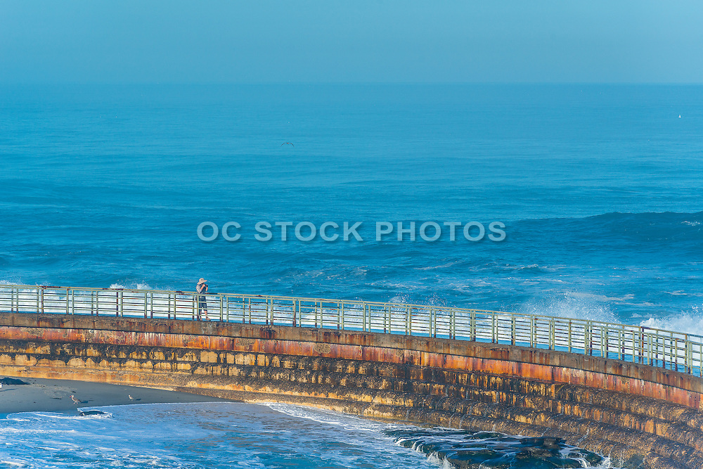 Sea Wall at the Children's Pool at La Jolla Cove in San Diego California