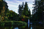 North America, United States, Oregon, Portland, Crystal Springs Rhododendron Garden, digital composite, HDR