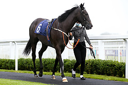 Five Stones ridden by George Downing trained by Dean Ivory - Mandatory by-line: Robbie Stephenson/JMP - 19/08/2020 - HORSE RACING - Bath Racecourse - Bath, England - Bath Races