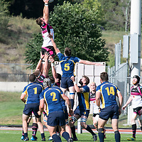 2019 West Coast Championship Rugby