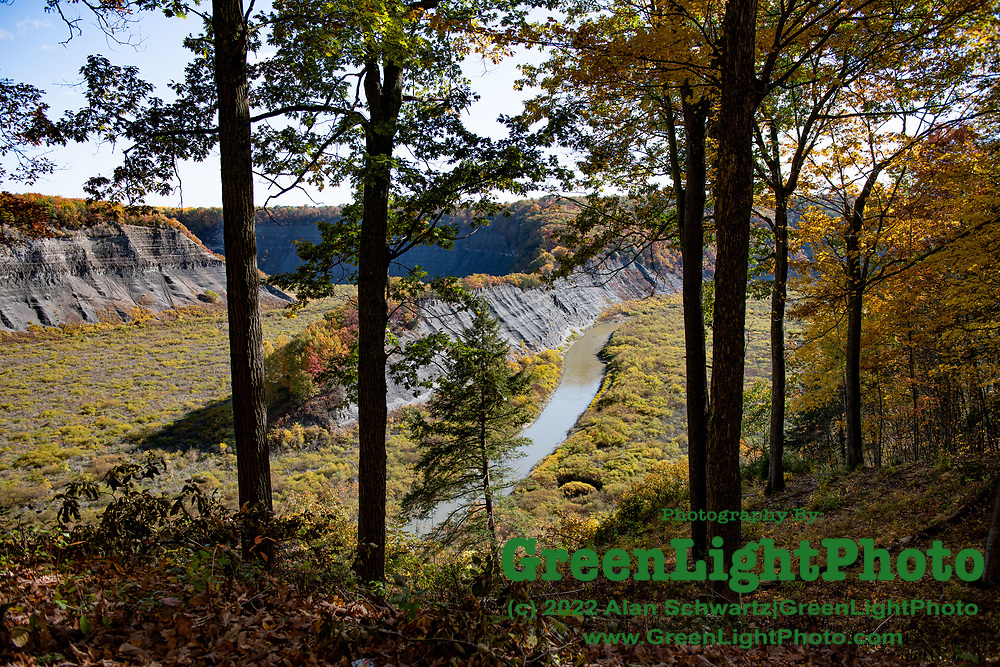 Fall Foliage at Letchworth State Park located in Livingston and Wyoming counties, New York. The Genesee River flows north through a deep gorge and over several large waterfalls.