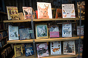 Books about cats in bookshop window