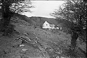 06-10/04/1964.04/06-10/1964.06-10 April 1964.Views on the River Shannon. In her neat whitewashed cottage nestling at the foot of the coalbanks, Mrs John Reynia, (Derrinavoggy, Arigna) tends her livestock, while her husband works in the mines closeby. Arigna, Co. Roscommon.