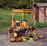 apple cart set up for an agricultural exhibition