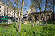 Cemetery outside Saint Mary Magdalen Anglican Church from Broad Street central Oxford. There are 45 graves in the burial ground. The church was dates back to the Saxon era.