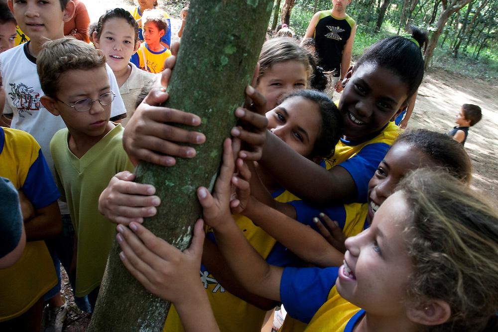Divinopolis_MG, Brasil..Criancas no Parque do Gafanhoto em Divinopolis, na foto criancas segurando uma arvore. ..Children in the Gafanhoto Park in Divinopolis, in this photo holding a tree...Foto: LEO DRUMOND / NITRO