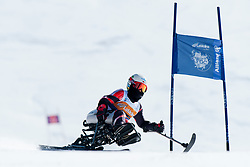 TANAKA Yoshiko, JPN, Giant Slalom, 2013 IPC Alpine Skiing World Championships, La Molina, Spain