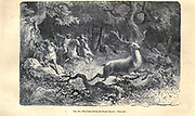 Bronze Age hunting according to the French illustrator Emile Bayard (1837-1891), illustration Artwork published in Primitive Man by Louis Figuier (1819-1894), Published in London by Chapman and Hall 193 Piccadilly in 1870