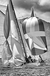 """Viola, a 1908 Gaff Cutter and Rosemary, a 1925 Bermudan Sloop. <br /> Limited to ten prints in Black & White, printed on fine art paper 24""""x16"""", stamped and signed."""