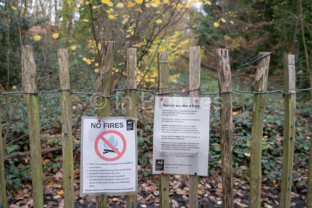A fence warns walkers to this part of the ancient woodland habitat in Sydenham Hill Woods, on 18th November 2020, in London, England. Once part of the Nunhead to Crystal Palace (High Level) railway which once passed through this flat part of Sydenham Hill Woods, its track bed can be followed to a disused and closed tunnel which is now a registered bat roost. Sydenham Hill Wood forms part of the largest remaining tract of the old Great North Wood, a vast area of worked coppices and wooded commons that once stretched across south London. The habitat is home to more than 200 species of trees and plants as well as rare fungi, insects, birds and woodland mammals.