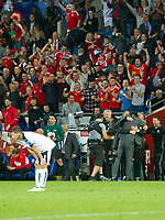 Football - 2017 / 2018 _Wales v Austria_FIFA World Cup Qualifier 2018<br /> <br /> Wales manager Chris Coleman & his staff celebrate victory on the touchline- as Stefan Lainer of Austria looks down -- at Cardiff City Stadium.<br /> <br /> COLORSPORT/WINSTON BYNORTH