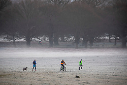 © Licensed to London News Pictures. 18/01/2020. London, UK. Dog walkers and families enjoy a wonderful frosty and misty morning in Richmond Park, London as forecasters predict a cold week ahead. Richmond Park issued a warning for ice after the previous day's high rain fall which could lead to increased slippery conditions for walkers and road users. Photo credit: Alex Lentati/LNP