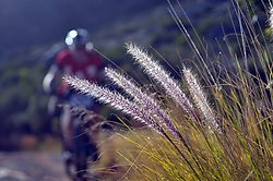 CAPE TOWN, SOUTH AFRICA - MARCH 18: Riders ascend Platteklip during the 20km prologue at UCT on Table Mountain on March 18, 2018 in Cape Town, South Africa. Mountain bikers from across South Africa and internationally gather to compete in the 2018 ABSA Cape Epic, racing 8 days and 658km across the Western Cape with an accumulated 13 530m of climbing ascent, often referred to as the 'untamed race' the Cape Epic is said to be the toughest mountain bike event in the world. (Photo by Dino Lloyd)
