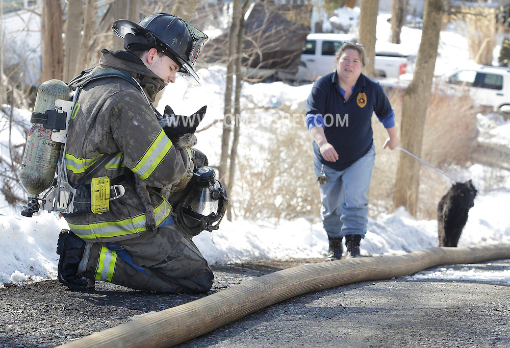 South Blooming Grove firefighter Erik Vath holds one dog while Melissa Veraldo of Blooming Grove animal control leads another dog rescued from a fire at 7 Wildwood Trail in Mountain Lodge Park on Wednesday, Feb. 13, 2013.
